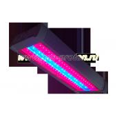 Светильник светодиодный для теплиц SSU-220/130-03.4(FGO)